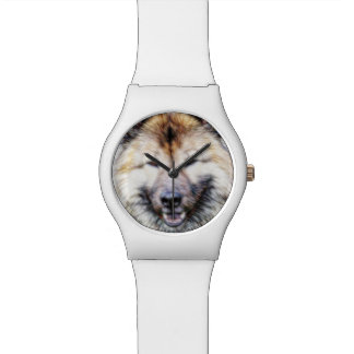 Dog friend watch