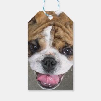 Dog Gift tag