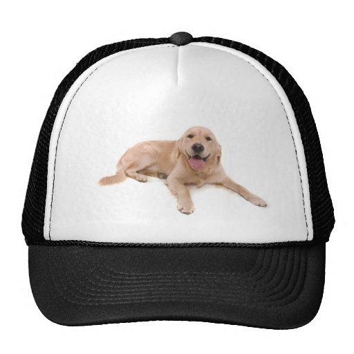 dog - golden retriever trucker hats
