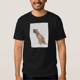 dog - golden retriever shirts