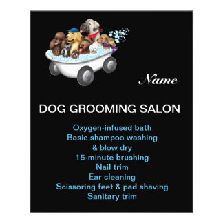 Dog grooming promotional flyers dog grooming promotional for A bath and a biscuit grooming salon