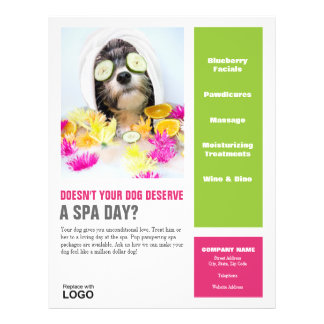 Dog Grooming Spa Poster Full Colour Flyer