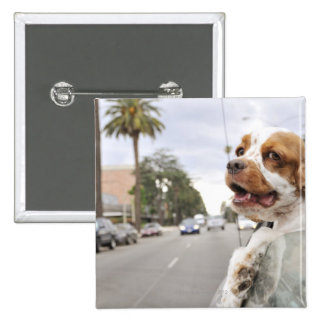 Dog hanging head out of car window 2 inch square button