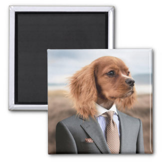 Dog in a Suit Magnet
