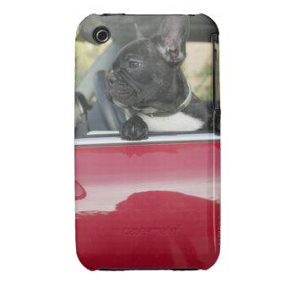 Dog in car iPhone 3 Case-Mate cases