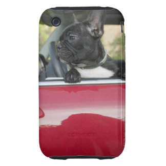 Dog in car iPhone 3 tough cover