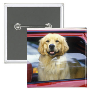 Dog in red car window 2 inch square button