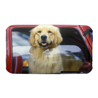Dog in red car window iPhone 3 cases