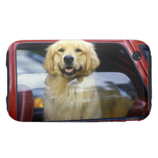 Dog in red car window tough iPhone 3 covers