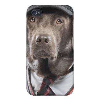Dog in sweater and cap iPhone 4/4S cases