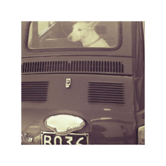 Dog in the car canvas print