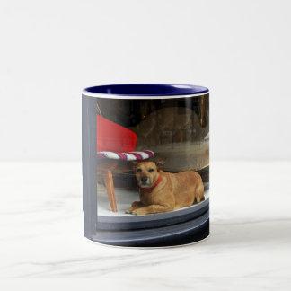 Dog in the window Two-Tone coffee mug