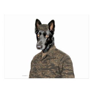Dog In Uniform Postcard
