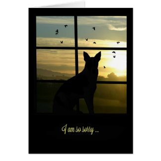 Dog in Window Dog Sympathy Card