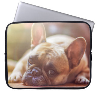 dog laptop computer sleeve