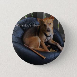 Dog life 2 inch round button
