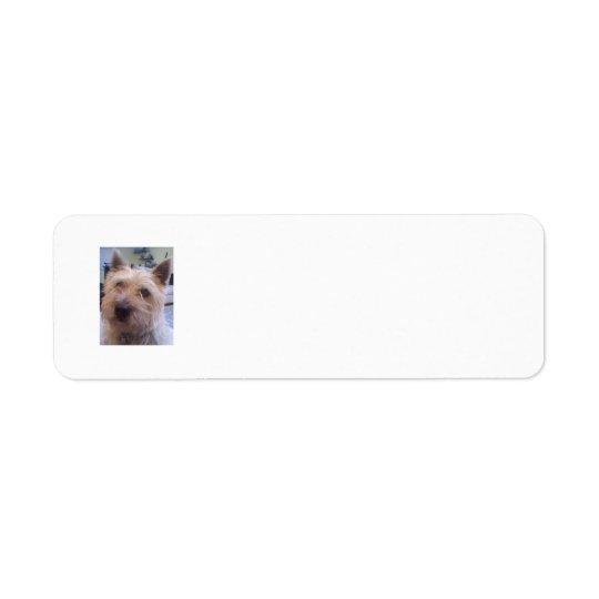 Dog lovers return address label
