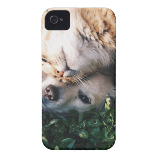 Dog Loves Kitty Case-Mate iPhone 4 Case