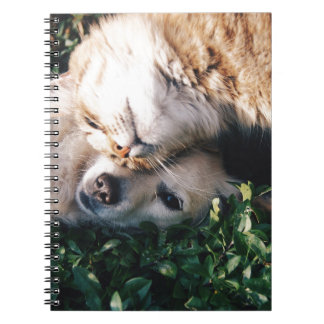 Dog Loves Kitty Note Book