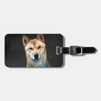 dog luggage tag