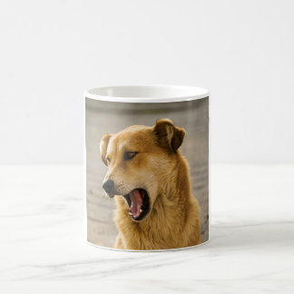 dog magic mug