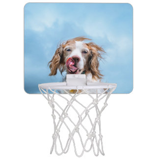 Dog Mini Baseball Game Mini Basketball Hoop