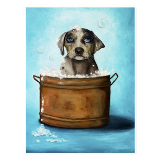 Dog n Suds Postcard