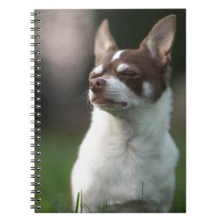 dog notebook