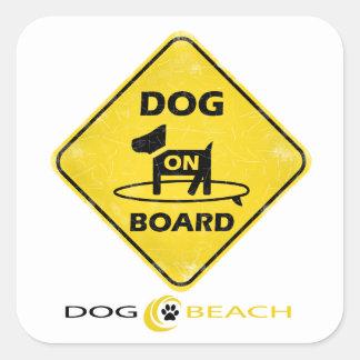 Dog on Board Square Sticker
