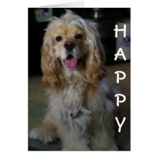 """DOG-ON GOOD BIRTHDAY"" says COCKER SPANIEL Card"