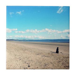 Dog On The Beach Tile