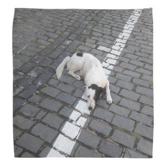 Dog On The Line Bandana