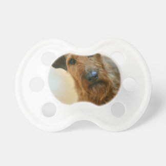 dog pacifiers