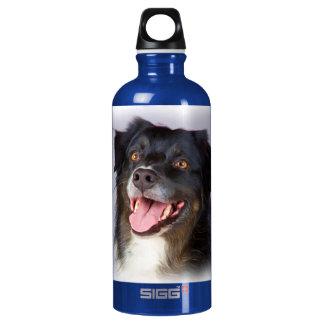 Dog painting - dog art - pet art water bottle
