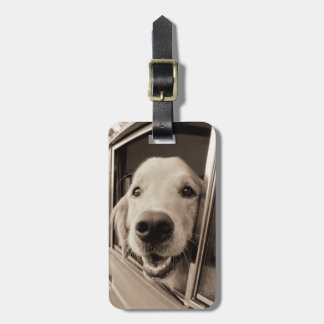 Dog Peeking Out a Car Window Luggage Tag