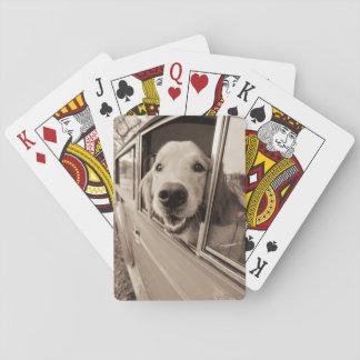 Dog Peeking Out a Car Window Poker Deck