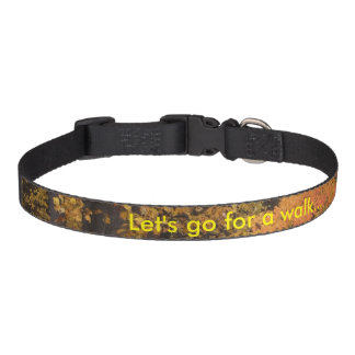 Dog Pet Collar Let's Go for a Walk Fall Leaves