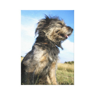 Dog Photo  Single Canvas Print