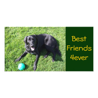 Dog playing with ball - happy Best Friends Photo Card Template