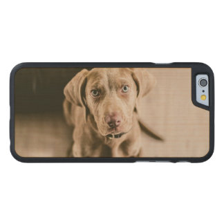 Dog portrait carved maple iPhone 6 case