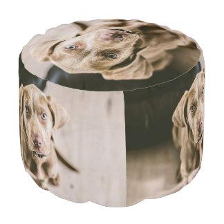 Dog portrait pouf
