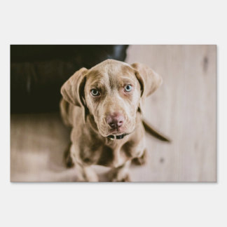 Dog portrait sign