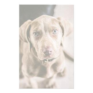 Dog portrait stationery