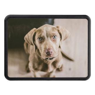 Dog portrait trailer hitch cover
