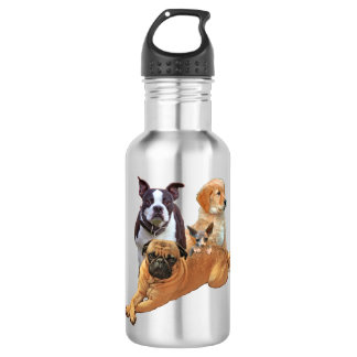 Dog posse with cat 532 ml water bottle