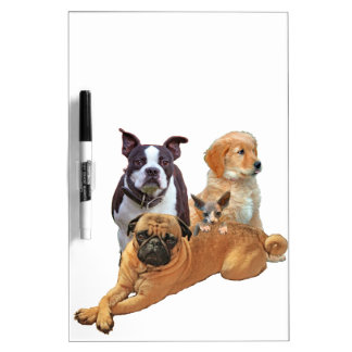 Dog posse with cat Dry-Erase board