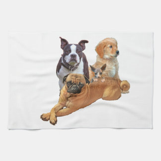 Dog posse with cat kitchen towel