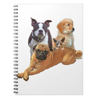 Dog posse with cat notebooks