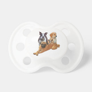 Dog posse with cat pacifier