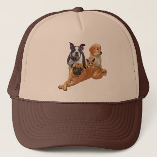 Dog posse with cat trucker hat